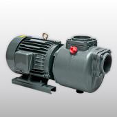 Bơm nước thải trục ngang APP - Model SC